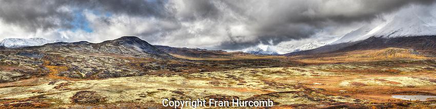 Alpine tundra on Haines highway in autumn