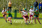 Jessica Fitzell of Kerry tries to get her effort away as Galways  Laura Ward attemps to close her down, in the National Camogie league in Lixnaw on Saturday.
