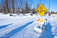 Rookie Middie Johnson of Unalakleet runs down the road at the Galena checkpoint during the 2010 Iditarod