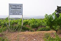 Domaine des Therons AOC Montpeyroux. Montpeyroux. Languedoc. France. Europe. Vineyard.