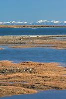 Romanzof mountains of the Brooks Range in the Arctic National Wildlife Refuge, Arctic, Alaska.