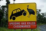Conservation road sign regarding cassowaries