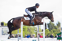 NZL-Tim Price (XAVIER FAER) FINAL-11TH: CCI3* SHOWJUMPING: 2015 IRL-Tattersalls International Horse Trial (Sunday 31 May) CREDIT: Libby Law COPYRIGHT: LIBBY LAW PHOTOGRAPHY