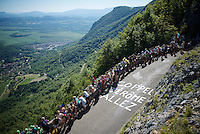 fans checking the valley for the riders to come up the Lacets du Grand Colombier (Cat1/891m/8.4km/7.6%)<br /> <br /> stage 15: Bourg-en-Bresse to Culoz (160km)<br /> 103rd Tour de France 2016