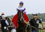 September 22, 2012. Handsome Mike, ridden by Irad Ortiz Jr. and trained by Leandro Mora, wins the Gr. II Pennsylvania Derby at Parx Racing in Bensalem, Pennsylvania. (Joan Fairman Kanes/Eclipse Sportswire)