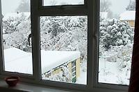 Winter snow in a suburban garden.