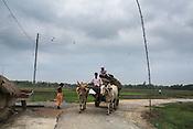 A man steers his bullock cart through the small village road in Bhelaiya village in Raxaul district in Bihar, India.