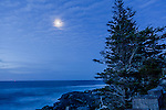 Quarter-moon at Schoodic Point in Acadia National Park, Maine, USA