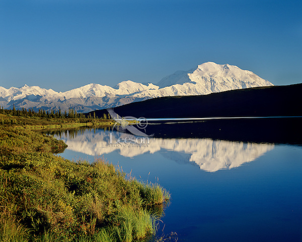 Mount McKinley reflecting in Wonder Lake, Denali National Park, Alaska.  August evening.