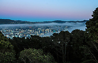 Wellington city from Mount Victoria at 6.30am, Friday during Level 3 lockdown for the COVID-19 pandemic in Wellington, New Zealand on Friday, 3 September 2021.