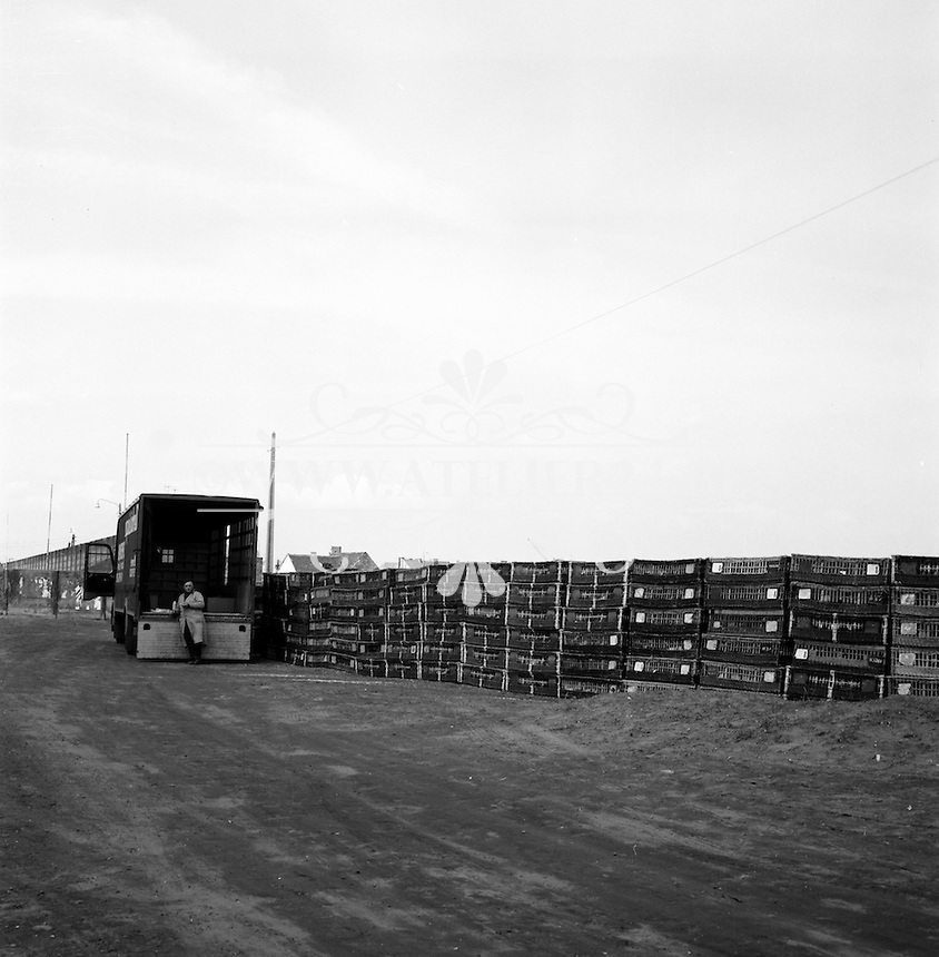 Duiventransport in 1963.