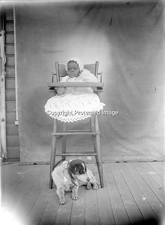 BABY AND DOG. Many of John Johnson's family portraits include pets. This well-dressed baby in a tall wooden high chair is posed in front of Johnson's familiar backdrop, tacked against a porch wall. The dog is positioned to catch scraps, but from the baby's jacket, it seems likely the day is chilly and dinner will be served inside.<br /> <br /> Photographs taken on black and white glass negatives by African American photographer(s) John Johnson and Earl McWilliams from 1910 to 1925 in Lincoln, Nebraska. Douglas Keister has 280 5x7 glass negatives taken by these photographers. Larger scans available on request.