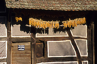 Europe/France/Alsace/68/Haut-Rhin/Ungersheim : Ecomusée d'Alsace - Ferme