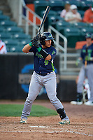Vermont Lake Monsters Jorge Gordon (9) at bat during a NY-Penn League game against the Aberdeen IronBirds on August 18, 2019 at Leidos Field at Ripken Stadium in Aberdeen, Maryland.  Vermont defeated Aberdeen 6-5.  (Mike Janes/Four Seam Images)