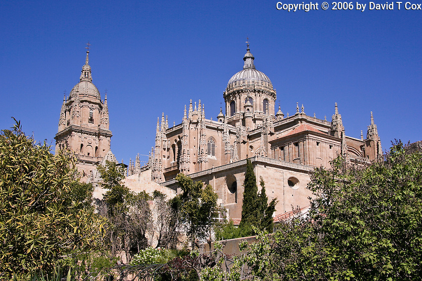Catedral from Patio Chico, Salamanca, Spain