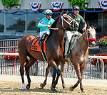 July 5, 2021: Tide of the Sea, ridden by Luis Saez, in the post parade prior to the 2021 running of the Grand Couturier S. at Belmont Park in Elmont, NY. Sophie Shore/ESW/CSM