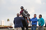 Cairo Prince and jockey Luis Saez after winning the $400K Holy Bull(G2) for 3 year olds at Gulfstream Park, Hallandale Beach Florida. 01-25-2014
