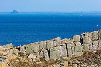 Europe/France/Bretagne/35/Ille et Vilaine/Côte d'Emeraude/Cancale: Pointe du Grouin - vue sur l'Ile des Landes et le Mont-Saint-Michel// France, Ille et Vilaine, cote d'emeraude (Emerald Coast), Cancale,The Pointe du Grouin  and Mont Saint Michel bay in the back
