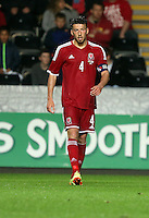 Pictured: Lee Lucas of Wales. Monday 19 May 2014<br />