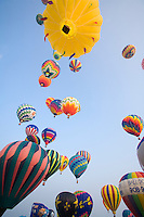 Balloon Festival, Readington, New Jersey