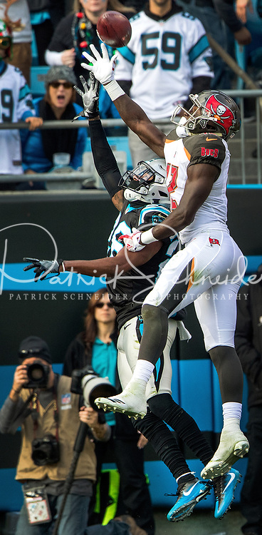 Photography of the Carolina Panthers v. The Tampa Bay Bucs, during their Sunday afternoon NFL game at Bank of America Stadium in Charlotte, North Carolina.<br /> <br /> Charlotte Photographer - PatrickSchneiderPhoto.com