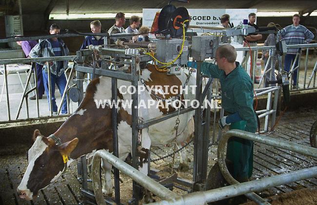 """gorsel 270700 er bestond veel belangstelling voor het """"rugvriendelijk""""klauwkappen op de open dag van de maatschap menkveld wijnbergen in het kader van koeien en kansen.<br />foto frans ypma APA-foto"""