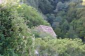Tuscany dupes