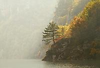 Morning at Perucac lake. Tara Mountain - Serbia.
