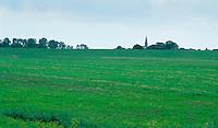 Intensiv genutztes Grünland, Wiese, Weide, Feld, Landwirtschaft