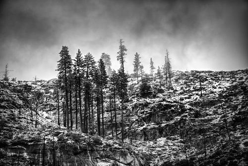 Yosemite National Park, Gary Wagner Photography