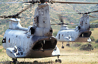 - transport helicopters CH 46 of the US Marines during NATO exercises at cape Teulada (Sardinia) ....- elicotteri da trasporto CH 46 degli US Marines durante esercitazioni NATO a capo Teulada (Sardegna)