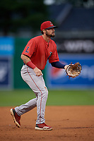 Lowell Spinners third baseman Nicholas Northcut (24) during a NY-Penn League Semifinal Playoff game against the Batavia Muckdogs on September 4, 2019 at Dwyer Stadium in Batavia, New York.  Batavia defeated Lowell 4-1.  (Mike Janes/Four Seam Images)