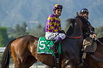 ARCADIA, CA MARCH 18: #5 Lady Tapit, ridden by Mario Gutierrez, in the post parade before  Santa Margarita Stakes (Grade 1) at Santa Anita Park in Arcadia, CA. (Photo by Casey Phillips/Eclipse Sportswire/Getty Images)<br /> ARCADIA, CA MARCH 18: #6 Perfect Pic, ridden by Santiago Gonzalez, in the post parade before  Santa Margarita Stakes (Grade 1) at Santa Anita Park in Arcadia, CA. (Photo by Casey Phillips/Eclipse Sportswire/Getty Images)