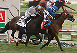 Wasted Tears riden by Rajiv Maragh wins the John C. Mabee Stakes at the Del Mar Thorobred Club, Del Mar, CA