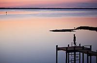Chincoteague Assateague Island Virginia Maryland Eastern Shore