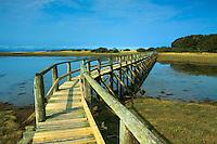 Aberlady Local Nature Reserve, Aberlady Bay, Aberlady, East Lothian