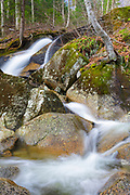 Cascade along Clough Mine Brook, a tributary of Lost River, in Kinsman Notch of Woodstock, New Hampshire USA during the spring months.