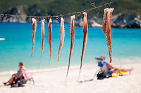 Kalamitsi, Sithonia, Halkidiki, Macedonia, Greece, May 2013. Dried octopus in vinagre and oil is a local delicatesse.  Kalamitsi is a small beach paradise that boasts interesting graphic coastal formations, unique golden beaches and the clean blue waters. Halkidiki is a peninsula in the shape of a hand with 3 fingers (Kassandra, Sithonia, Athos), in the north of Greece. Peninsula is lined with 550 km of white sandy beaches which are backed by rocky forested hills and the clear blue and turquoise waters of the Aegean Sea. Photo by Frits Meyst/Adventure4ever.com