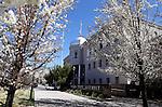 Nevada Legislature 2013
