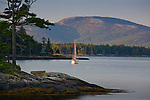 A sailboat at sunrise near Cadillac Mountain in Acadia National Park, ME, USA
