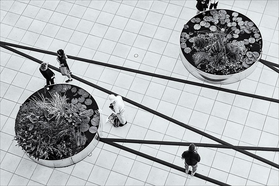 Living Art, Whitney Museum