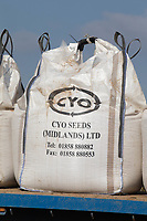 7-3-2021 Bags of Spring barley seed <br /> ©Tim Scrivener Photographer 07850 303986<br />      ....Covering Agriculture In The UK....