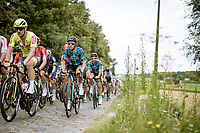 Jonas van Genechten (BEL/B&B) over the cobbles<br /> <br /> Grote Prijs Marcel Kint 2021<br /> One day race from Zwevegem to Kortrijk (196km)<br /> <br /> ©kramon