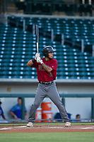 AZL Diamondbacks left fielder Didimo Bracho (9) at bat against the AZL Cubs on August 11, 2017 at Sloan Park in Mesa, Arizona. AZL Cubs defeated the AZL Diamondbacks 7-3. (Zachary Lucy/Four Seam Images)