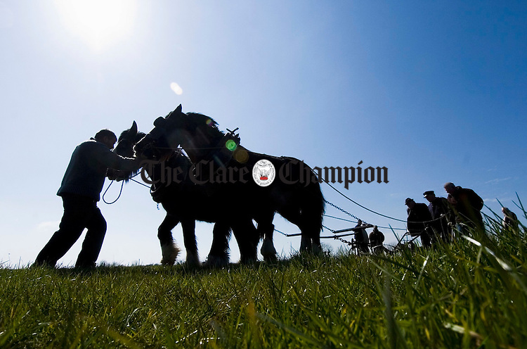 Man and horses combine to turn the sod in the Spring sunshine at the Clare Ploughing championships at Newmarket on Fergus. Photograph by John Kelly.