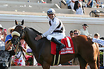 Amazombie winner of the Bing Crosby Stakes (G1) at Del Mar Race Course in Del Mar, California on July 29, 2012.