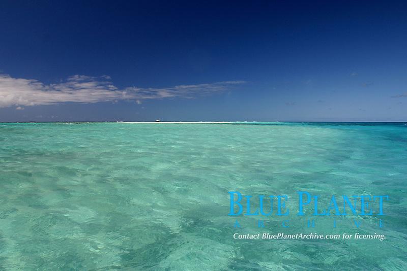 shallow sand flats, Pearl and hermes reef, Northwestern Hawaii, USA, USAan Islands, Pacific Ocean