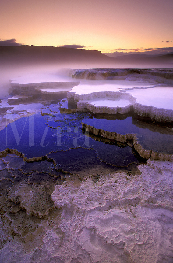 Mammoth Terraces.  Yellowstone National Park, Wyoming.