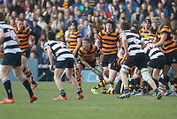 2015 ULSTER SCHOOLS CUP FINAL | Tuesday 17th March 2015<br /> <br /> T.J. Morris during the 2015 Ulster Schools Cup Final between RBAI and Wallace High School at the Kingspan Stadium, Ravenhill Park, Belfast, Count Down, Northern Ireland.<br /> <br /> Picture credit: John Dickson / DICKSONDIGITAL