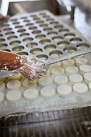 Europe/Europe/France/Midi-Pyrénées/46/Lot/Saint-Sulpice: Ferme du Mas de Thomas - Préparation des fromages de chêvre AOP Rocamadour - le moulage
